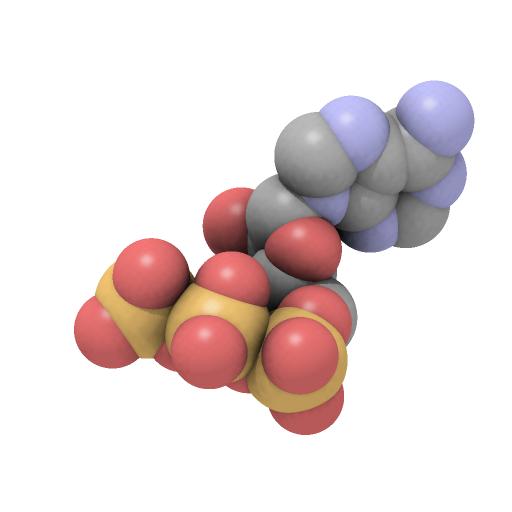 atp adenosine triphosphate rejuvenate superfoods