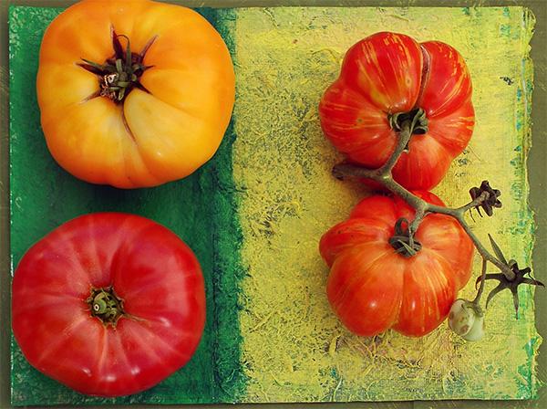 organic tomato tomatoes